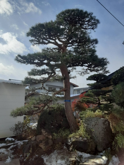 長野市 S様邸